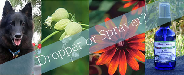 Dropper or Sprayer?