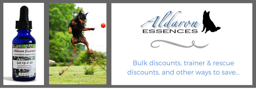 Ongoing Discounts and Promotions